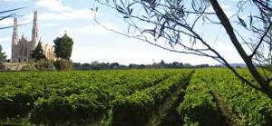 Casa sicilia vineyards la mola view